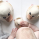 baby bath toys picture