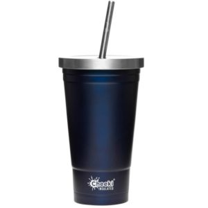 Biome Eco Stores | Insulated Tumbler with Straw