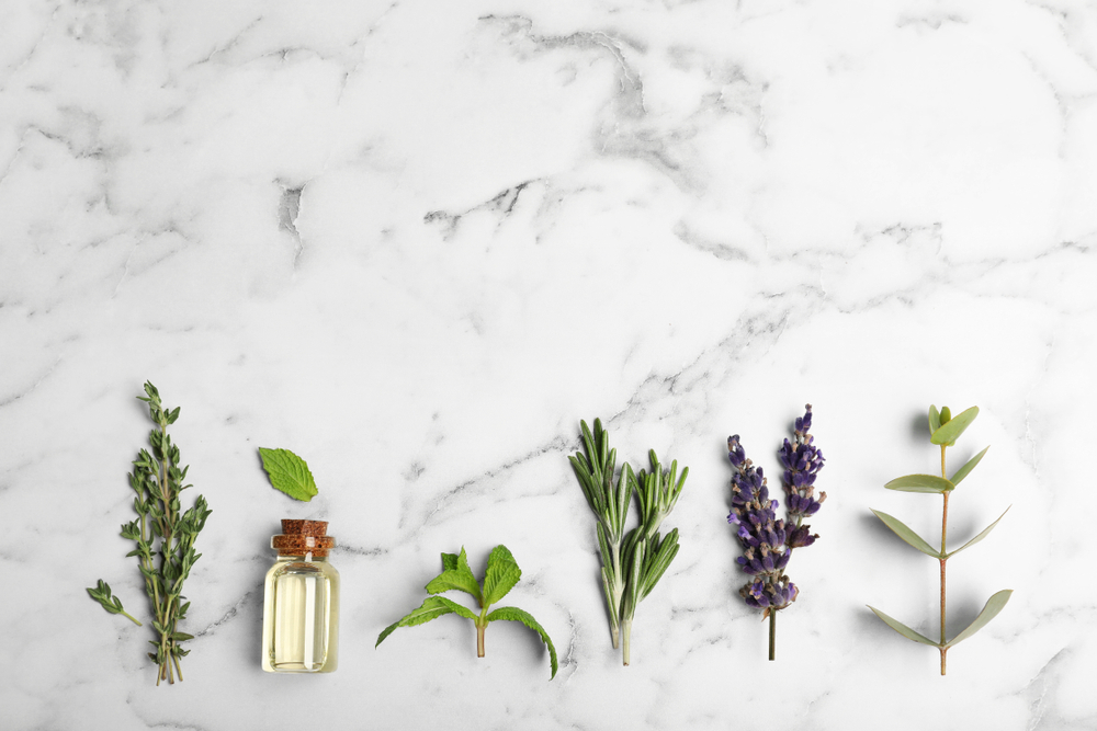 5 ways to fragrance your space without petrochemicals | Biome Eco Stores | Eco Friendly Cleaning
