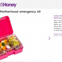 Motherhood emergency kit