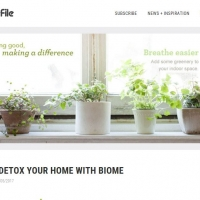 How to detox your home with Biome