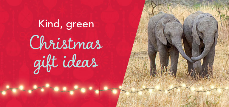 Kind green christmas gift ideas