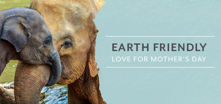Earth friendly love for Mothers Day