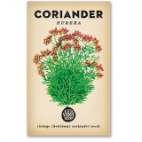 Heirloom seeds - coriander eureka