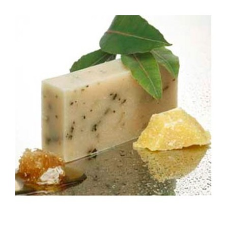 Beauty & the Bees shampoo bar - tasmanian wild leaves