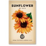 Heirloom seeds - sunflower hi sun