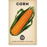 Heirloom seeds - corn sweet