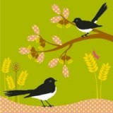 Buy Earth Greetings gift card set - willie wagtails (4)