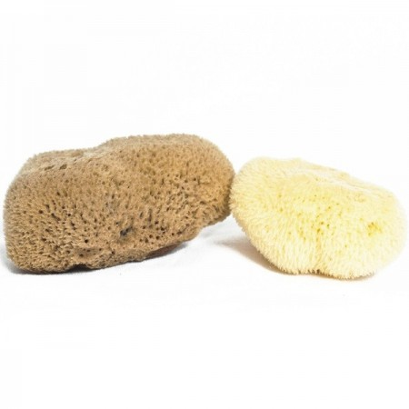 Meeka Sea Sponge - Fine Silk Mini Sponge