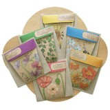 Sow 'n Sow Gift of Seeds Set of 6