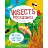 Insects In 30 Seconds