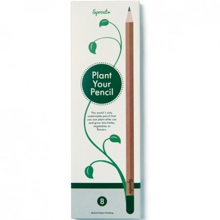 Sprout Graphite Pencil - Mint