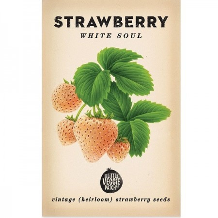 Heirloom Seeds - Strawberry White Soul