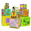 Green start stacking & nesting blocks (10)