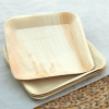 Palm leaf plates - 25 dinner square
