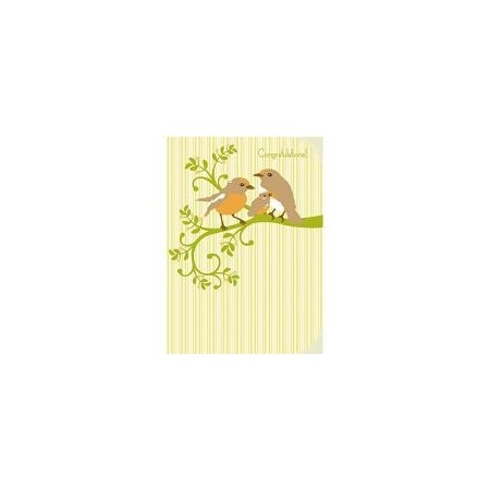 My Earth kids cards - new baby robins
