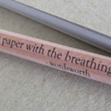 Buy Kylie Johnson quote pencils - wordsworth (4)