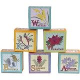 Buy Australian flora boxed soap 60g