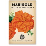 Heirloom seeds - marigold petite mixed