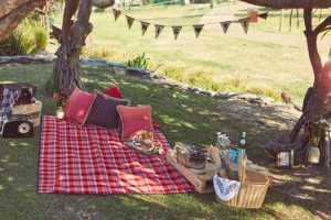 Hold an eco-friendly picnic to celebrate Father's Day, or any special occasion