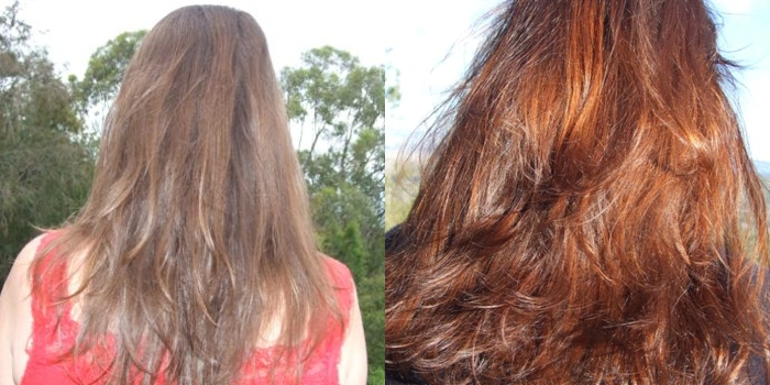 Hair Colouring With Plant Dyes