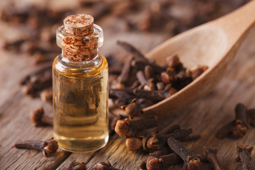 Clove oil for mould removal