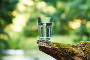 The best water filter for home or office