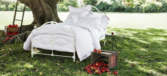 organic cotton sheets bed linen